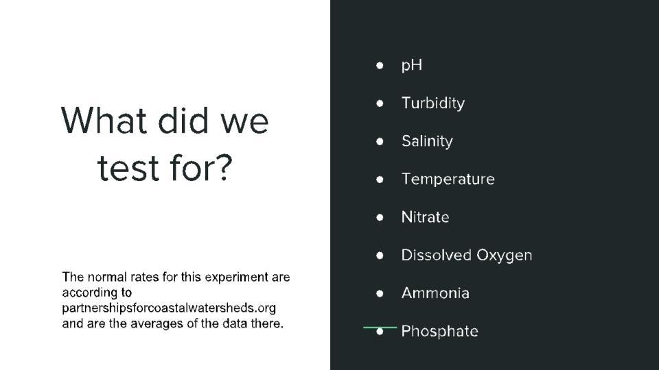 Natasha PowerPoint.pptx (2).jpg