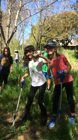 Students conducting a clean up of Thompson Creek.