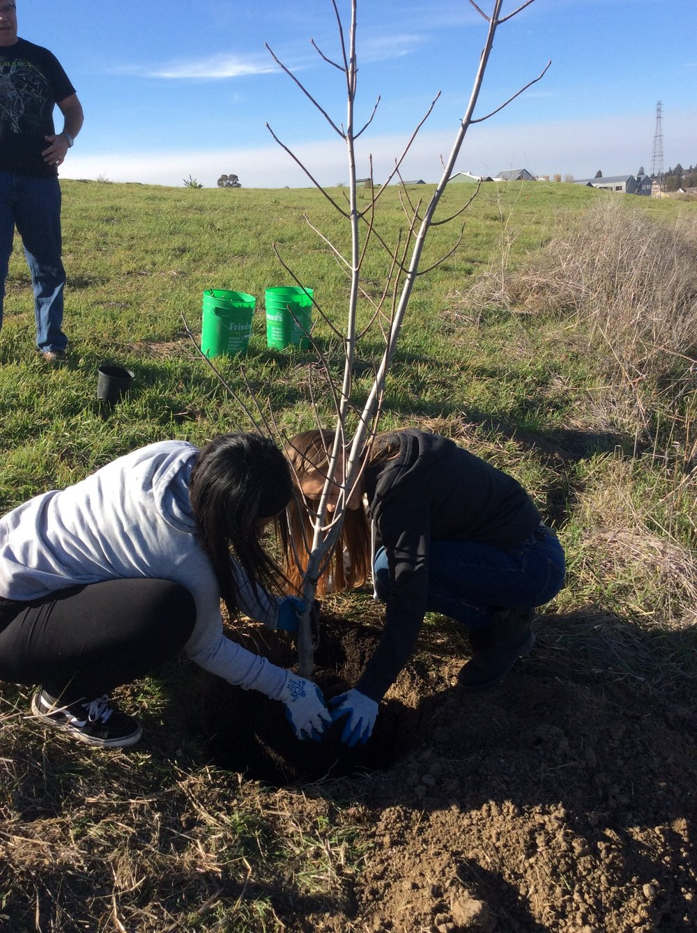 Students engaging in restoration at Steamer Landing Park (Fall 2017).