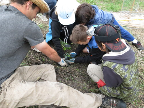 students planting.jpg