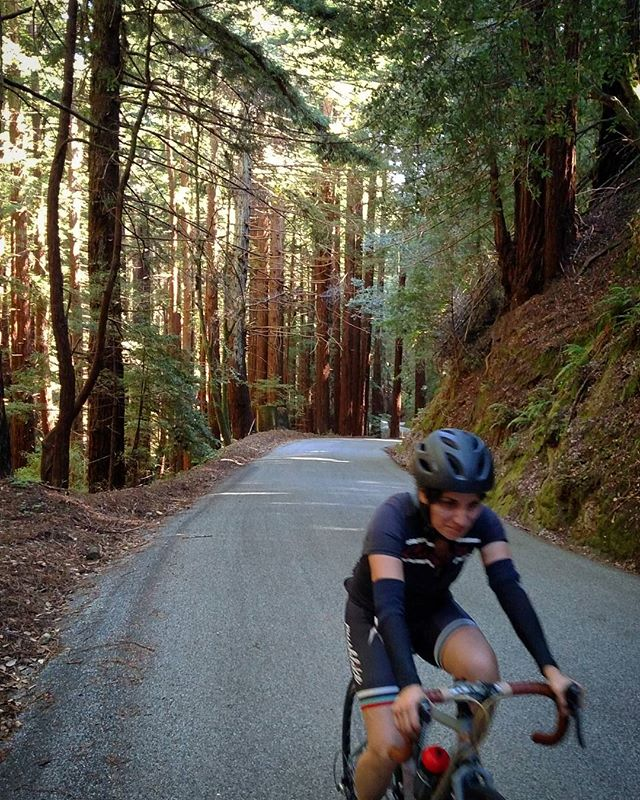 Made in the shade! Pedaled a couple hours to get to this seemingly endless (in a good way) climb from the coast through #redwoods. Road leveled out a bit near the top so we could finish feeling fast-ish with no cyclocomputers or #strava to diminish the enjoyment of the ride. Took a long nap after getting home, slept through many fireworks. Not a bad day.  #bikesarefreedomgetsome #getoutside