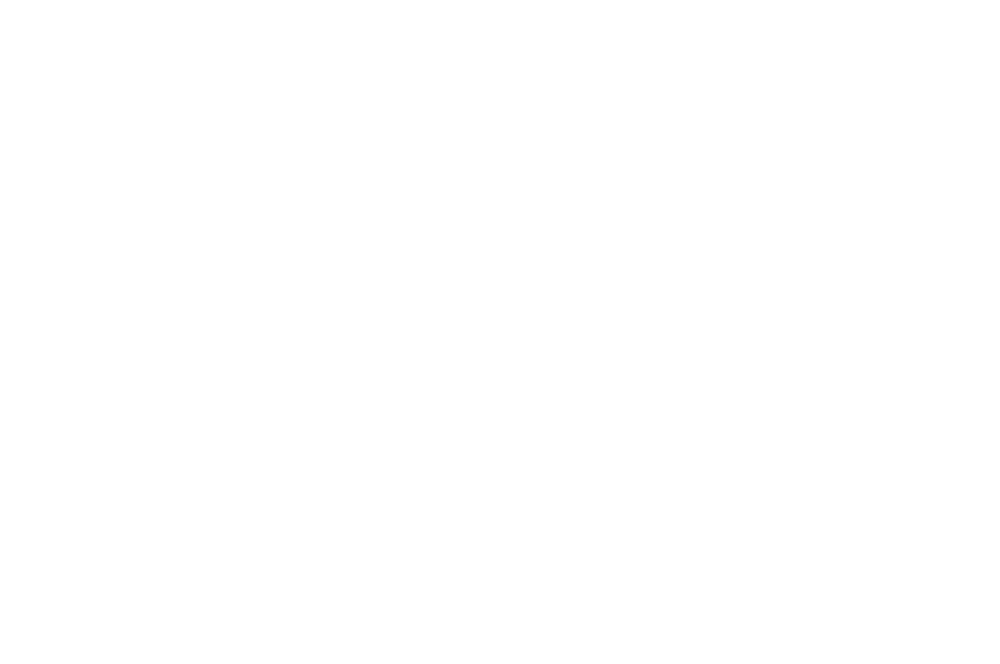 WINNERBESTSTUDENTFILM-BucharestShortCutCineFest-January2017.png