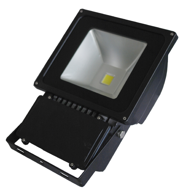 Floodlight 80-100W Black.jpg