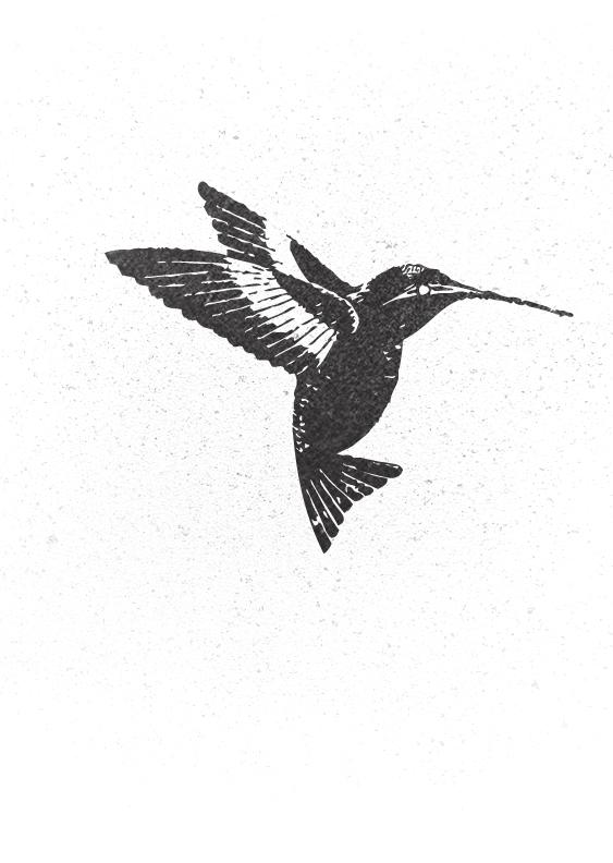 Bird_Speckle.jpg