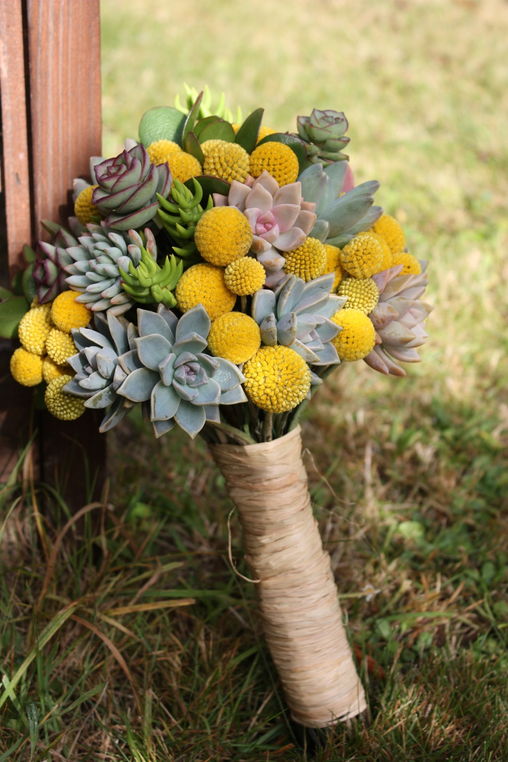 Jen's Bouquet was a eclectic mix of organic succulents and organic craspedia, and finished with raffia. This bouquet may have been the heaviest bouquet I have ever made! All the succulents ad a lot of weight. After the wedding Jen was able to root and plant her succulents to keep a part her bridal bouquet!