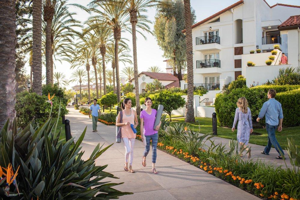 Yoga & Palm Promenade.jpg