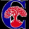 2015-16+Comal+ISD+logo.png