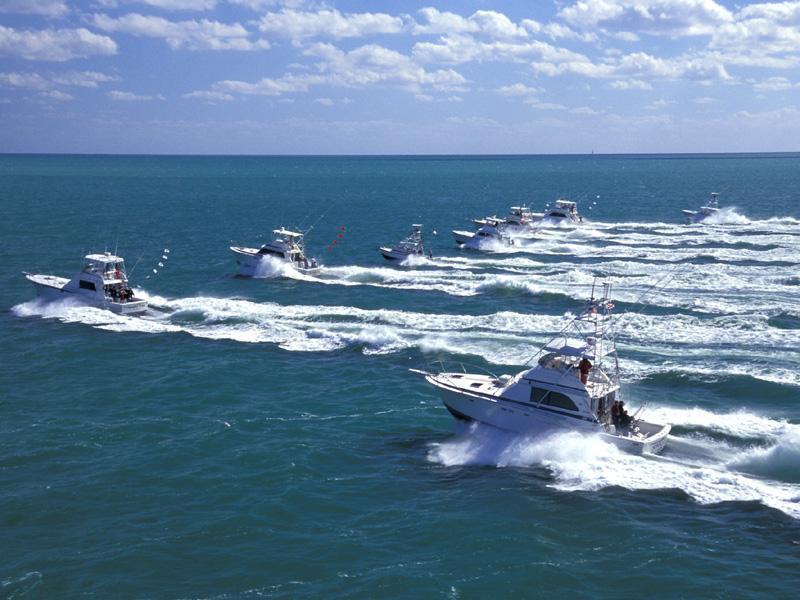oceanreefboats1_sbr.jpg