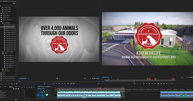 Finished up another edit for our friends at @animalrefugeleague 📼📼📼 . . . #portland #portlandmaine #maine #207 #madeinmaine #buylocal #boston #providence #newengland #videoproduction #exploremaine #video #mainemedia #media #videoprodution #commercial #crashboombangmedia #crashboombasement  #vhs #tape #puppybowl #adopt #cats #dogs #holiday #love #arlgp