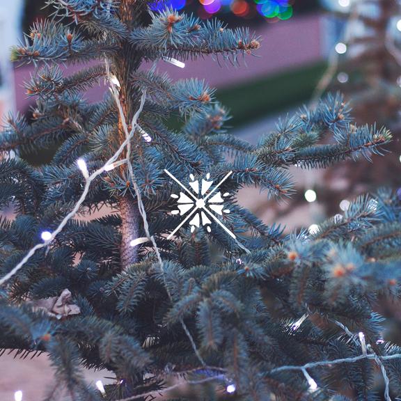 advent201539.jpg