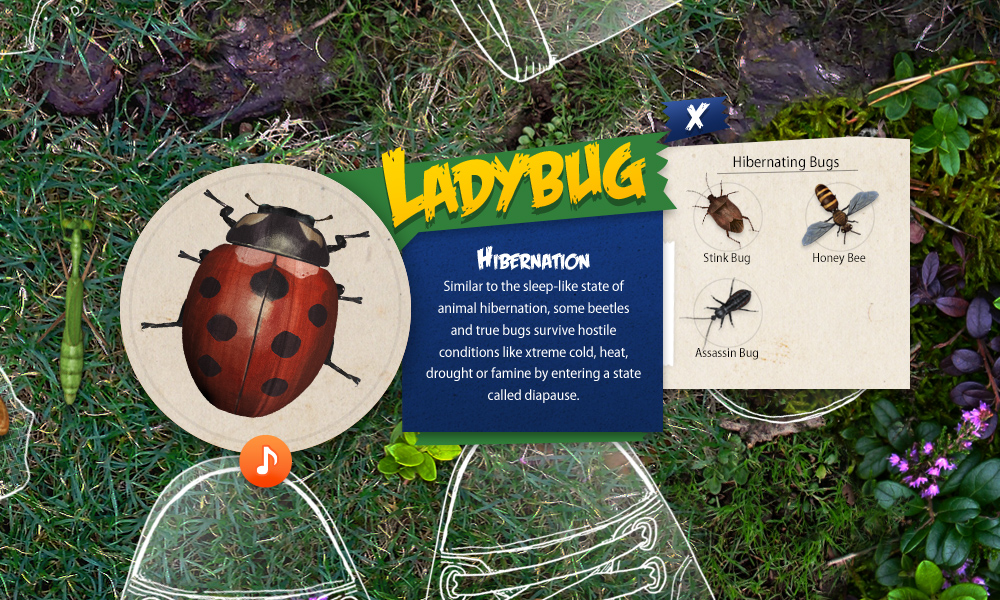 Additional bugs within the same classification are shown, allowing the visitor to explore the other bugs right from this panel.