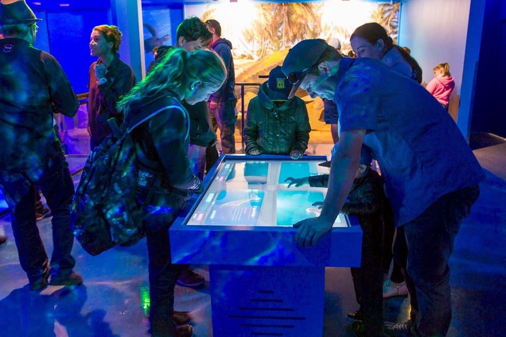 The table in action at Sea World. Photo by 97.3 FM Brisbane.
