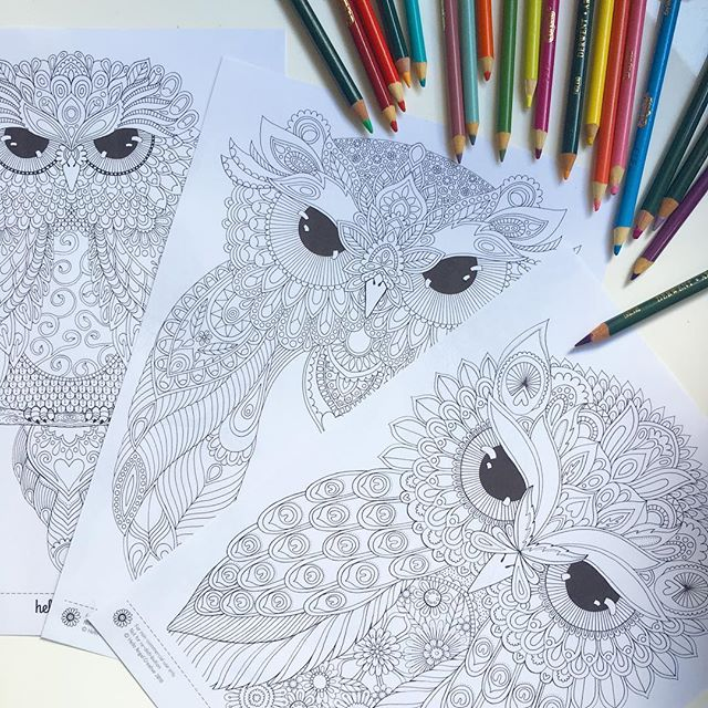 New owl friends to download and colour in my Etsy stores 😀 . . . . #owl #owlcoloring #etsydownload #etsyshop #smallbusiness #art #illustration #drawing #cuteowls #owllove #owlstagram_feature #owllover #coloringisfun #coloringpages