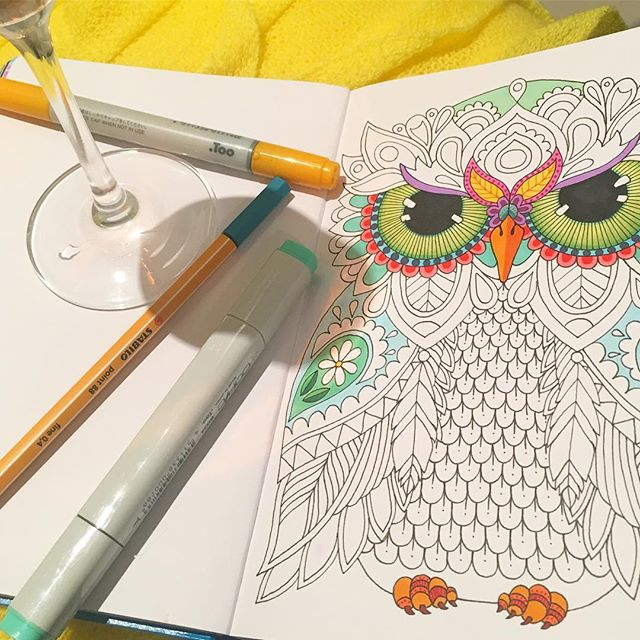 "Colouring this guy under the shadow of a glass of bubbly awaiting the royal ""I dos"" 👸🏻🤴🏼🥂❤️ . . . . #royalwedding #coloring #bubbly #bubbles #waiting #wedding #owl #owlart #outlines #ink #sketchbook #digitaldetoxlt1917 #larrypostdigitaldetox"