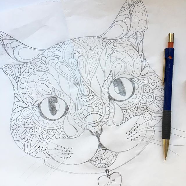 Kitty sketch is about to get inked- yeah! . . . . . #kitty #kittycat #meow #miaow #cat #illustration #sketch #pencilsketch #pencillines #details #inknext #outlines #ineedacat #catlover #catwishes