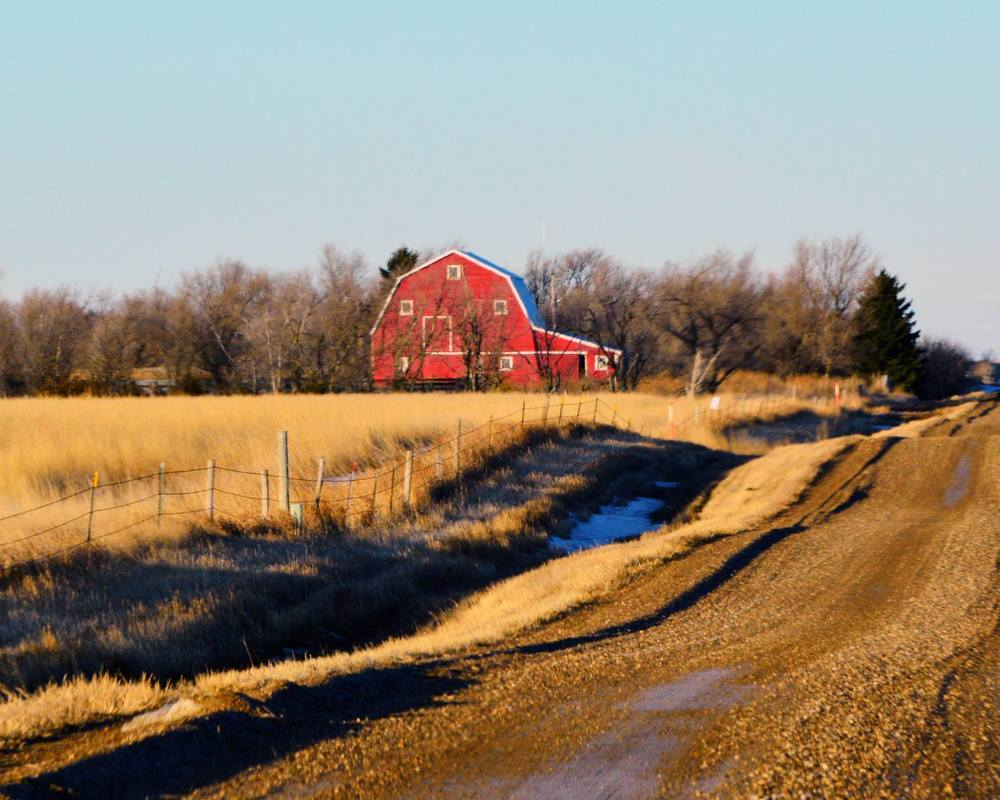 Barns in the Landscape, 1st Place - Rebecca Palmer