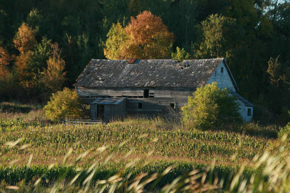 Barns in the Landscape, Honorable Mention - Pete Fisk
