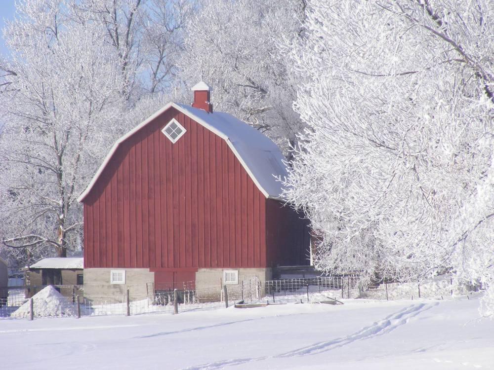 Barns in Winter, 2nd Place - Helen Zuelch