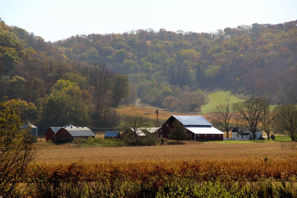 2nd Place Autumn Barns - Joni Mehus