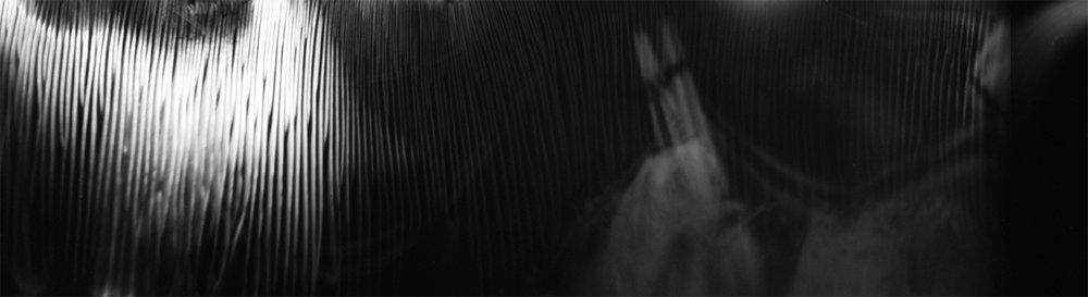 Shroomscape No. 3 ·Pinhole Camera, 120mm film ·Pigment Print