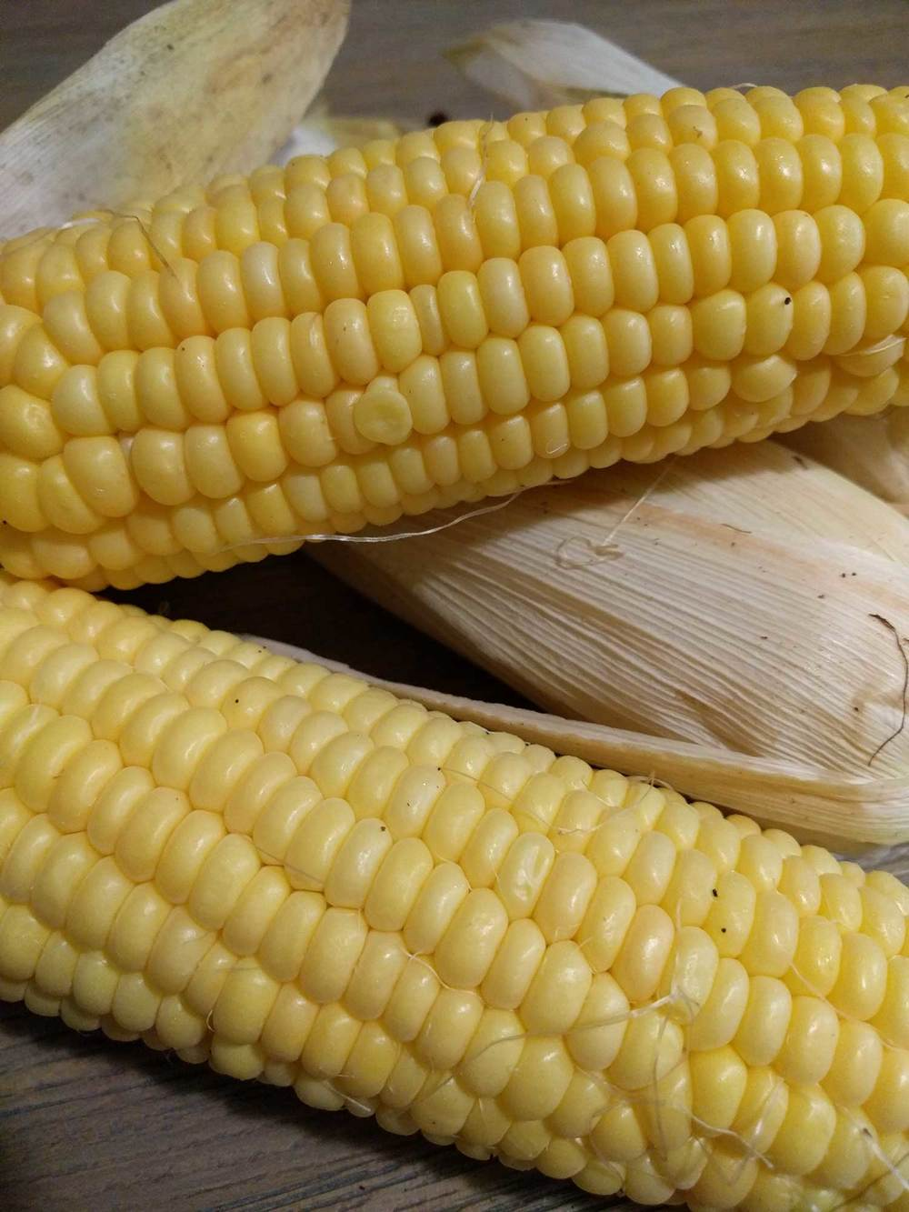 "Sweet Corn ""Balinese,"" an heirloom variety."