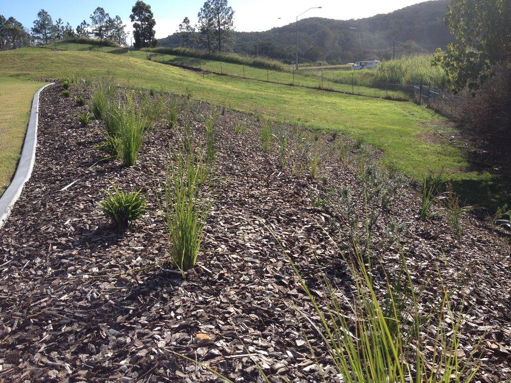 UnityWater Sewage Treatment Plant Landscape Design Mass Planting.JPG