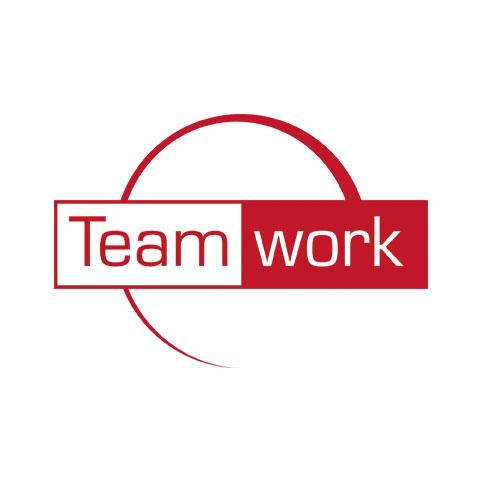 Team Work - Consulenza e Formazione