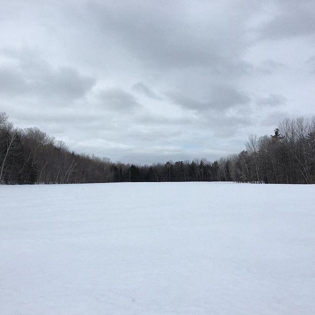 Classic winter white