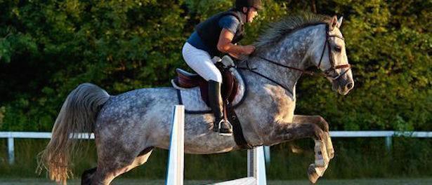 Aktiv til hest - Fra 7 år