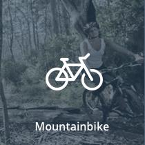 Lej cykel i skoven fra 250 kr