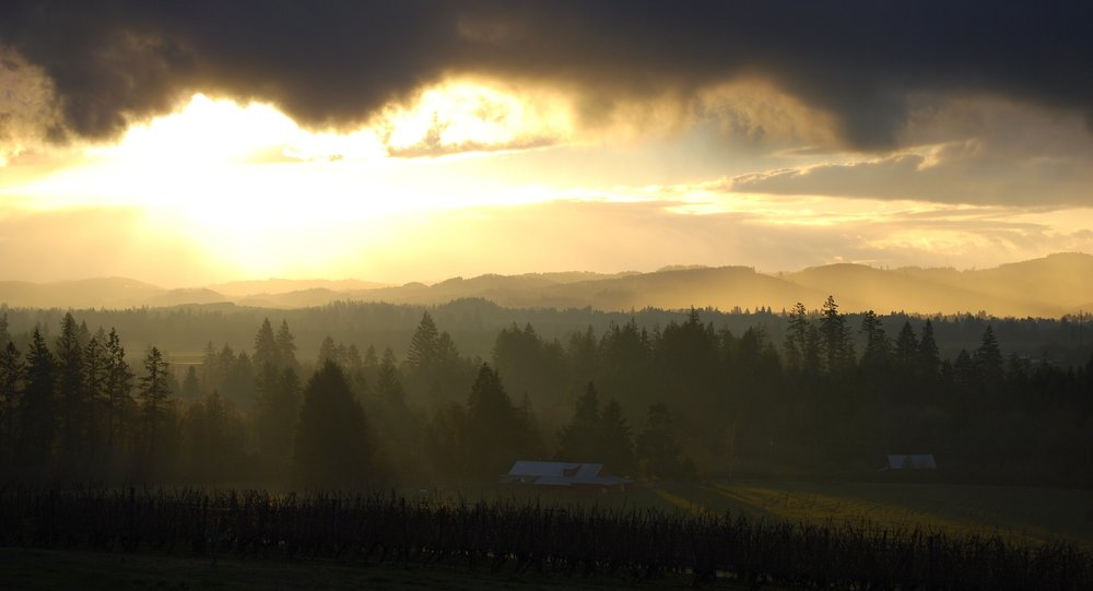 AA sunrise.jpg