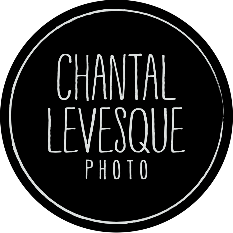 Montreal Pet Photography Chantal Levesque photo