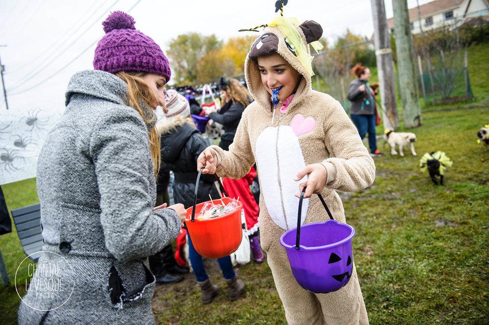 La belle Maïka, déguisée en pug, qui distribue des gâteries pour chiens et humains