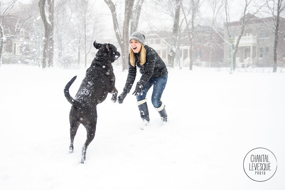 dog-playing-snow-7779.jpg