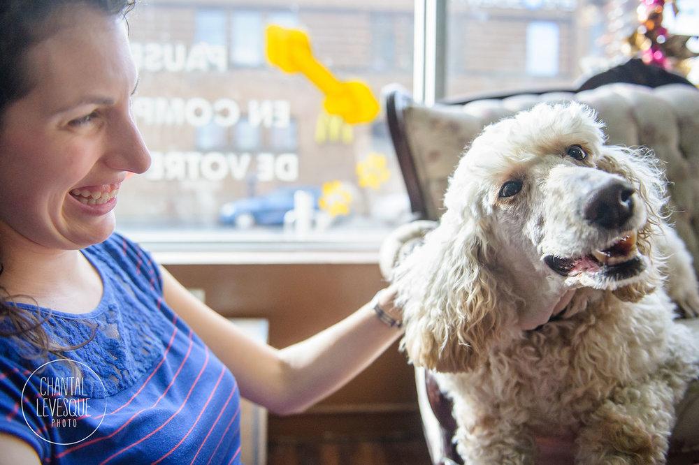 Doggy-cafe-frises-2418.jpg