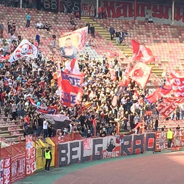 Crvena Zvezda vs FK Borac. #research #football #hellgrade #srbija ⚽️❤️🇷🇸