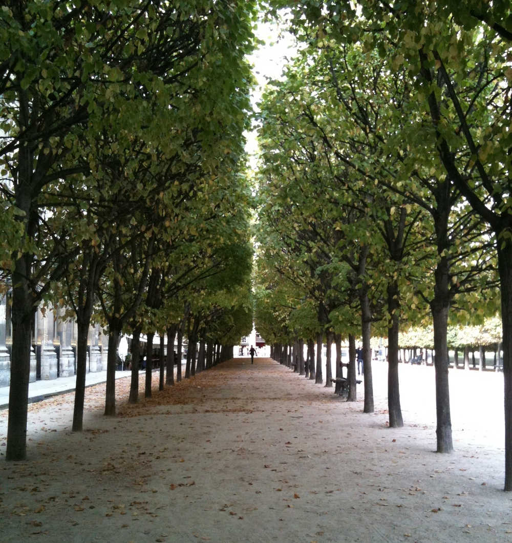 One of my favorite places in Paris, the Palais Royal garden. Photo: DelRae
