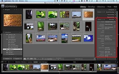 Fullscreen-1.jpg