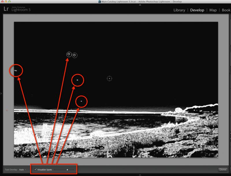 visualize-spots