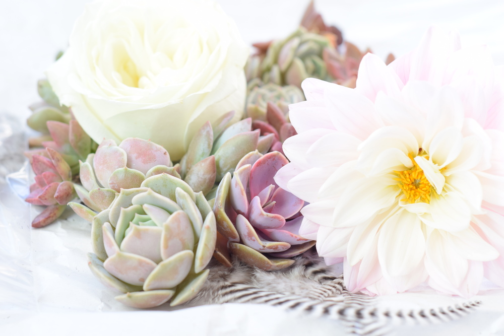 Succulents, Dahlias, Feathers, Houston Boho Wedding