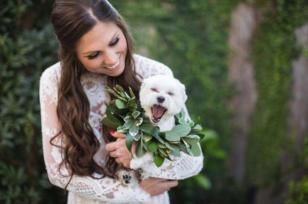Bride & Pup- Maxit Flower Design- Woodlands, Hosuton