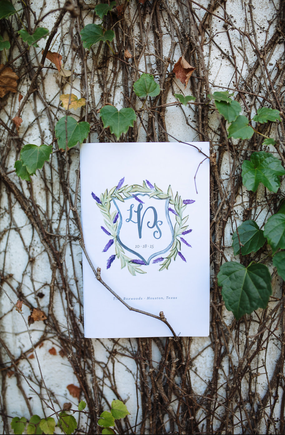 Hand Lettering- Ivy- Maxit Flower Design- Houston Weddings