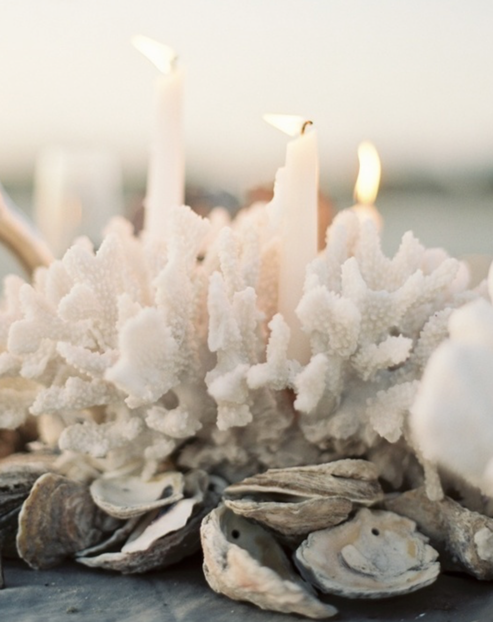 Oyster Shell & Coral centerpiece in place of a floral piece. Use what you have in your surroundings.