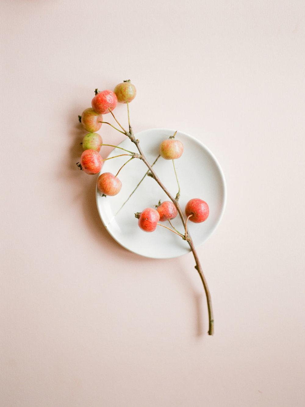 Crab-Apple-Details-Houston-Stylist-Maxit-Flower-Design.jpg