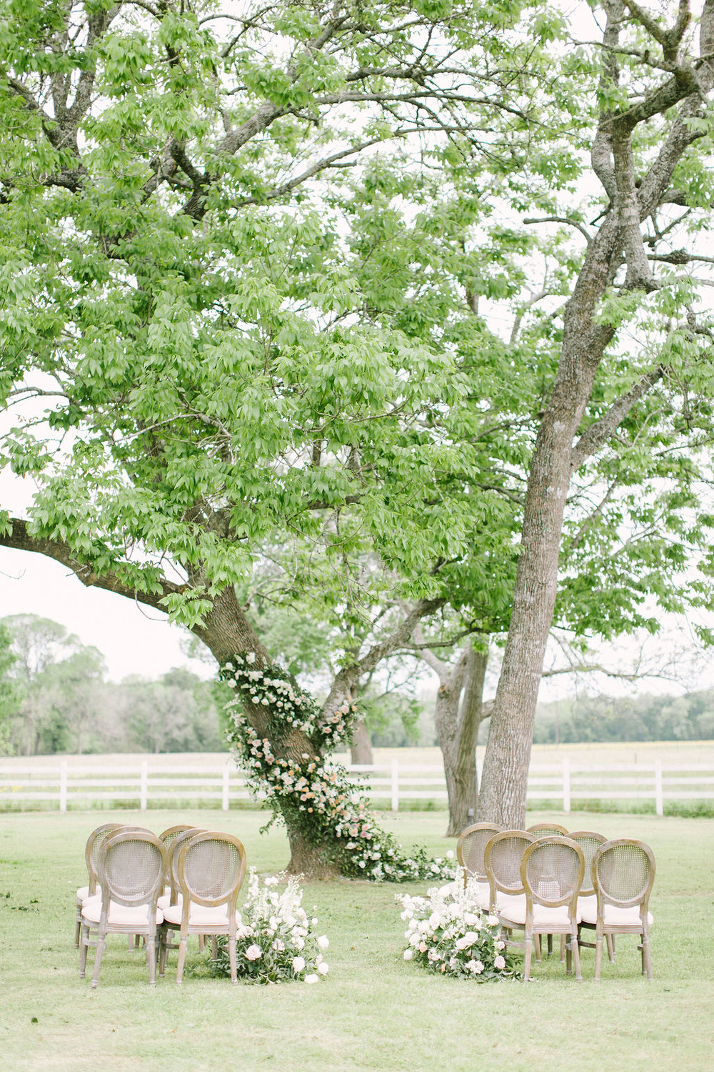 Tree installation and aisle flowers by Maxit Flower Design. Photographed by Kate Elizabeth. Styled by Shannon Ducker