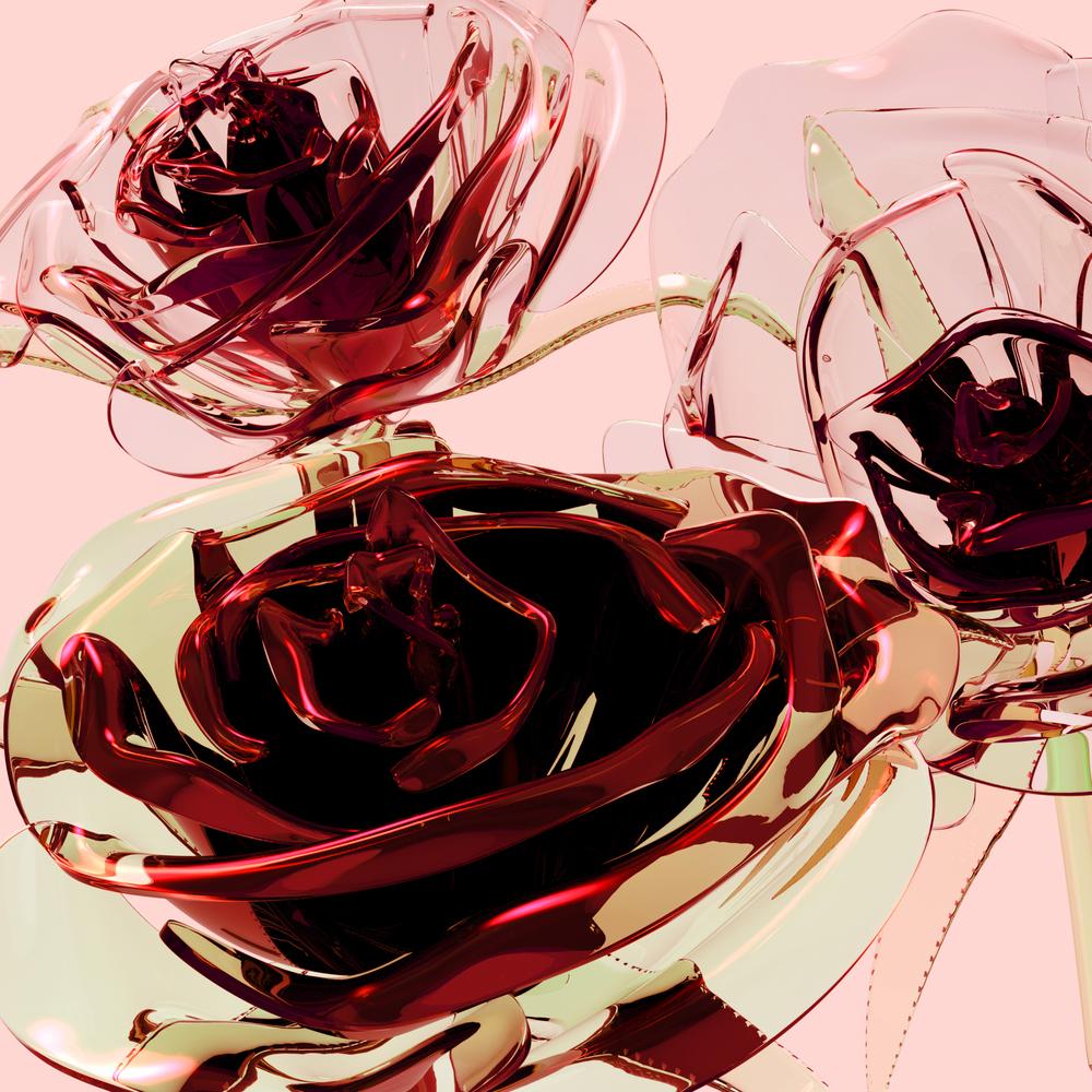 leighton_roses_rememberwhereyougotit