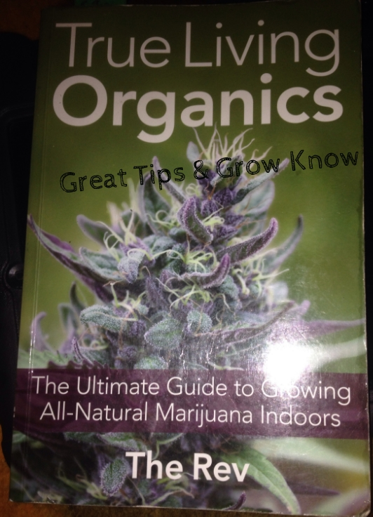 THIS IS THE PROGRAM & I'M STICKING TO IT. ORGANIC WEED IS THE                                                                    BEST!