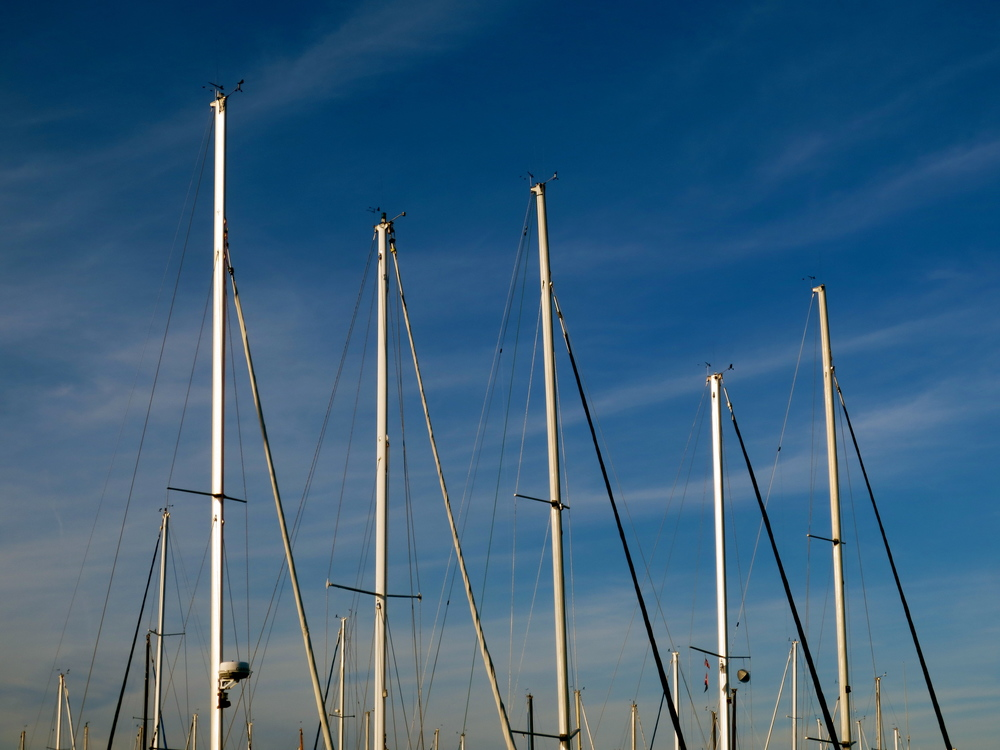Boat Masts.JPG