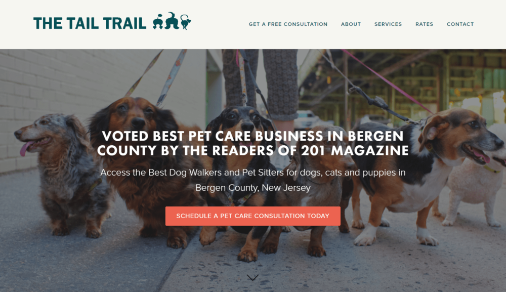 The Tail Trail - Dog Walkers in Bergen Count - TheTailTrail Website-min.png