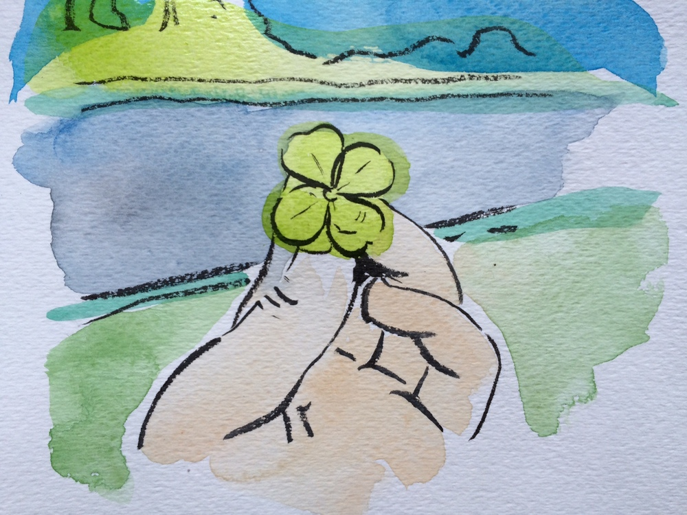 How To Find Four Leaf Clovers And What To Do With Them Sophie